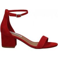Zapatos Mujer Sandalias Steve Madden IRENEE SUEDE red