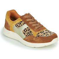 Zapatos Mujer Zapatillas bajas Damart 62328 Beige / Amarillo