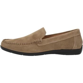 Zapatos Hombre Mocasín Imac 500711 beige