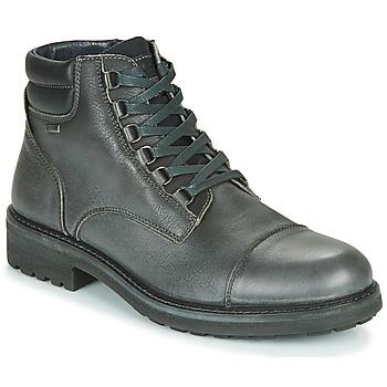Zapatos Hombre Botas de caña baja IgI&CO UOMO FREDDY GTX Gris