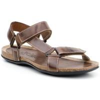 Zapatos Hombre Derbie Nautic Blue Zapatos náuticos de piel by Marron