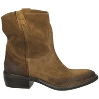 Zapatos Mujer Botas de caña baja Ton Gout VELOUR bosco-bosco
