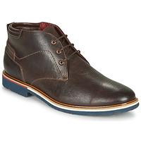 Zapatos Hombre Botas de caña baja Lloyd  Marrón
