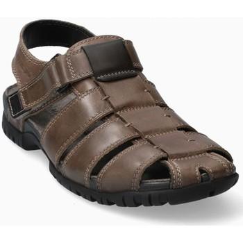 Zapatos Hombre Sandalias Mephisto BASILE Marrón