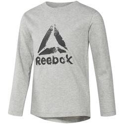 textil Niño Camisetas manga larga Reebok Sport DH4344 Gris