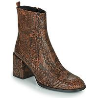 Zapatos Mujer Botines Fericelli NAKE Negro / Marrón
