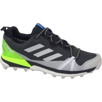 Zapatos Hombre Senderismo adidas Originals Terrex Skychaser LT Gtx Grises, Verde claro, Grafito