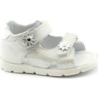 Zapatos Niña Sandalias Balocchi BAL-E20-103113-ARG-b Argento