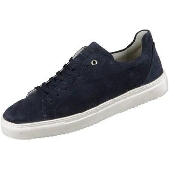 Zapatos Hombre Zapatillas bajas Sioux Tils Azul marino