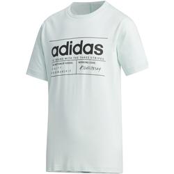 textil Niños camisetas manga corta Adidas Performace CAMISETA ADIDAS YB BB T Verde