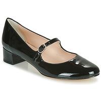 Zapatos Mujer Zapatos de tacón Betty London NALAURA Negro