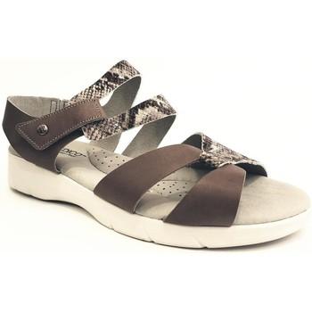 Zapatos Mujer Sandalias Arcopedico VENEZIA PIEL GRIS GRIS