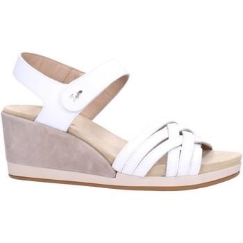 Zapatos Mujer Sandalias Benvado PALMA Multicolore