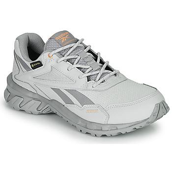 Zapatos Zapatillas bajas Reebok Classic RIDGERIDER 5 GTX Gris