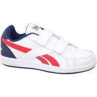 Zapatos Niños Zapatillas bajas Reebok Sport Royal Prime Blanco, Rojos, Azul marino
