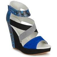 Zapatos Mujer Sandalias Serafini CARRY Negro / Azul / Gris