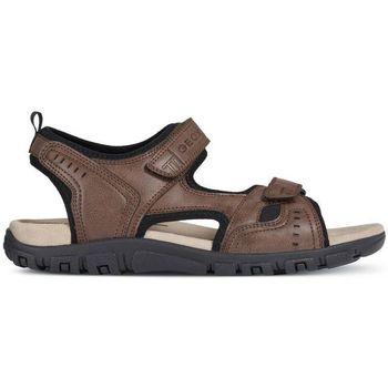 Zapatos Hombre Sandalias Geox SANDALIA  STRADA C6009 41