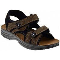 Zapatos Hombre Sandalias Inblu  Multicolor