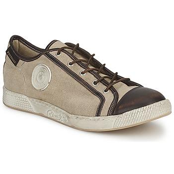 Zapatos Hombre Zapatillas bajas Pataugas JOKE T Beige