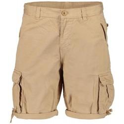 textil Hombre Shorts / Bermudas Scout Bermuda  100% algodón (10065-be) Beige