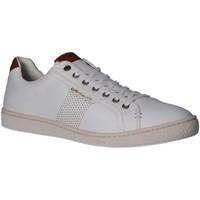 Zapatos Hombre Zapatillas bajas Kickers 769370-60 SONGO Blanco