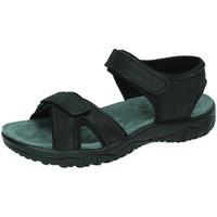 Zapatos Hombre Sandalias de deporte Xti Sandalias de piel Negro