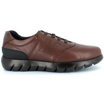 Zapatos Hombre Zapatillas bajas CallagHan 19400 marrón