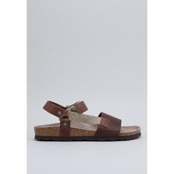 Zapatos Hombre Sandalias Senses & Shoes  Marrón