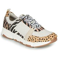 Zapatos Mujer Zapatillas bajas Gioseppo CREAZZO Leopardo