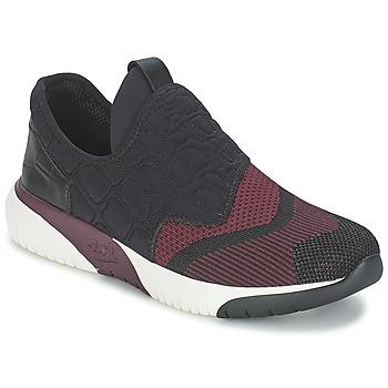 Zapatos Mujer Zapatillas bajas Ash SODA Burdeo