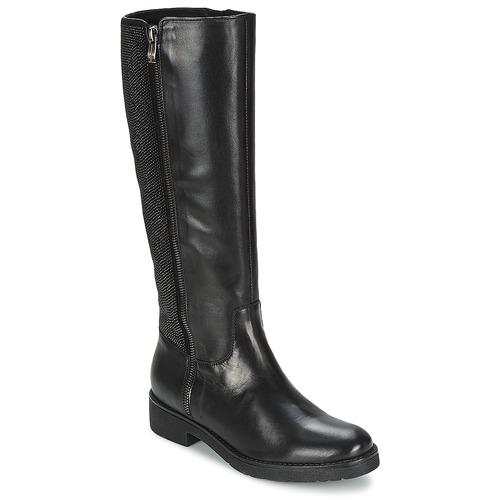 Zapatos Mujer Botas urbanas Tosca Blu ABELLINUM Negro