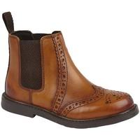 Zapatos Niño Botas de caña baja Roamers  Tostado