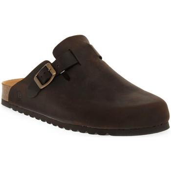 Zapatos Mujer Zuecos (Clogs) Bioline 1900 MORO INGRASSATO Marrone
