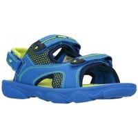 Zapatos Niño Sandalias de deporte Joma 2004 Royal Flour Niño Azul bleu