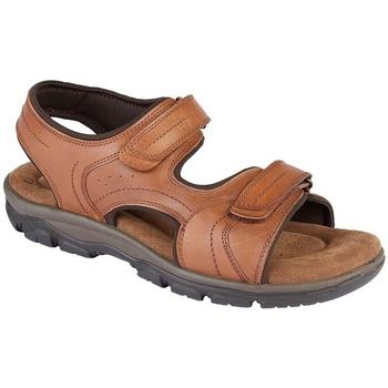 Zapatos Hombre Sandalias Roamers  Marrón tostado