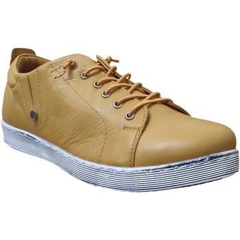 Zapatos Mujer Derbie Andrea Conti 0348736 sneaker Cuero amarillo