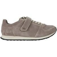 Zapatos Mujer Zapatillas bajas Lacoste Agadel Srw LT Beige