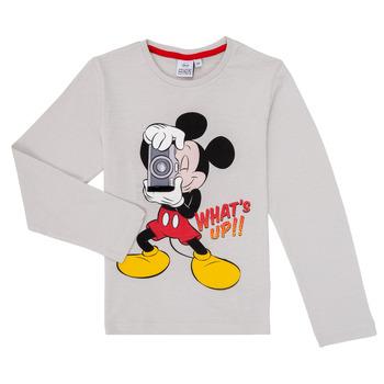 textil Niño Camisetas manga larga TEAM HEROES  MICKEY Gris
