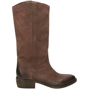 Zapatos Mujer Botas urbanas Ton Gout WASH terra-terra