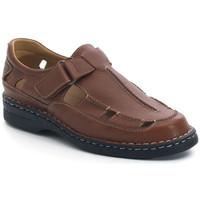 Zapatos Hombre Sandalias Calzamedi S  GIOTTO MARRON
