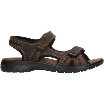 Zapatos Hombre Sandalias de deporte Imac 503370 marrón