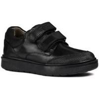 Zapatos Niño Derbie Geox  Negro