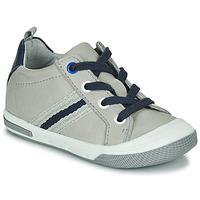 Zapatos Niño Zapatillas bajas Little Mary LOGAN Gris