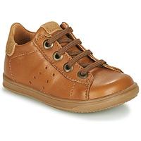 Zapatos Niño Zapatillas bajas Little Mary DUSTIN Cognac