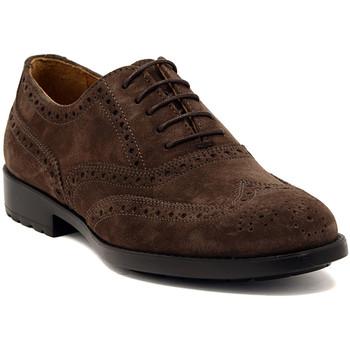 Zapatos Hombre Richelieu Marco Ferretti NEWPORT BROWN Multicolore