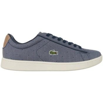 Zapatos Mujer Zapatillas bajas Lacoste Carnaby Evo Grises