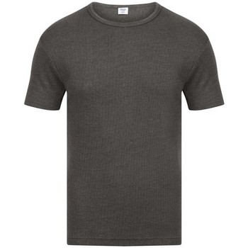 Ropa interior Hombre Camiseta interior Absolute Apparel  Carbón