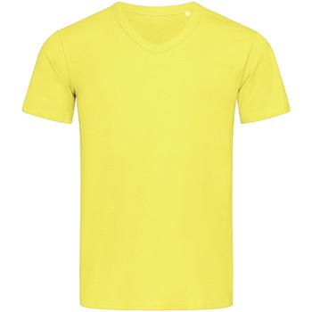 textil Hombre Camisetas manga corta Stedman Stars  Amarillo Daisy