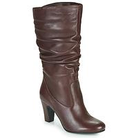 Zapatos Mujer Botas urbanas André LALALY Burdeo
