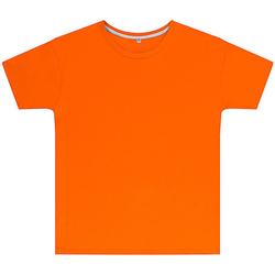 textil Niños Camisetas manga corta Sg SGTEEK Naranja